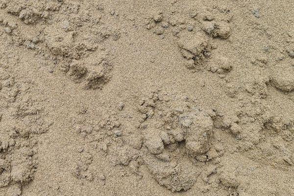 Fill Sand Icon
