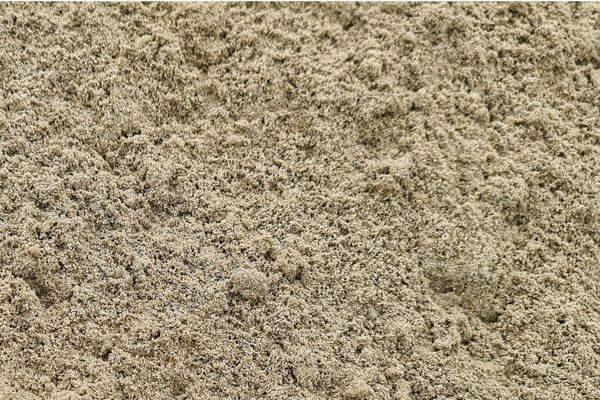 Top Dressing Sand